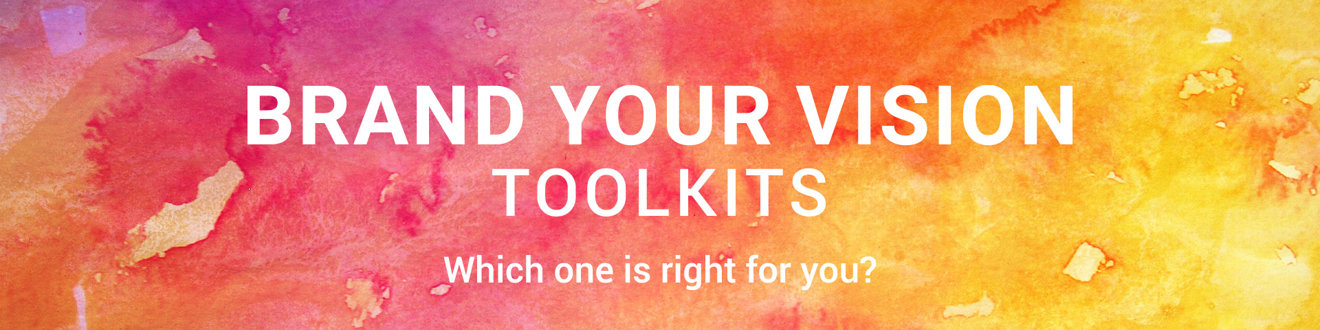 Brand Your Vision Toolkits.  Which one is right for you?